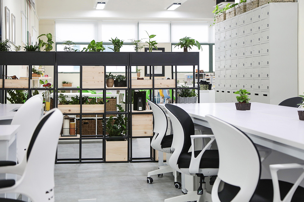 circoop, coworking space, Hong Kong, fixed desk